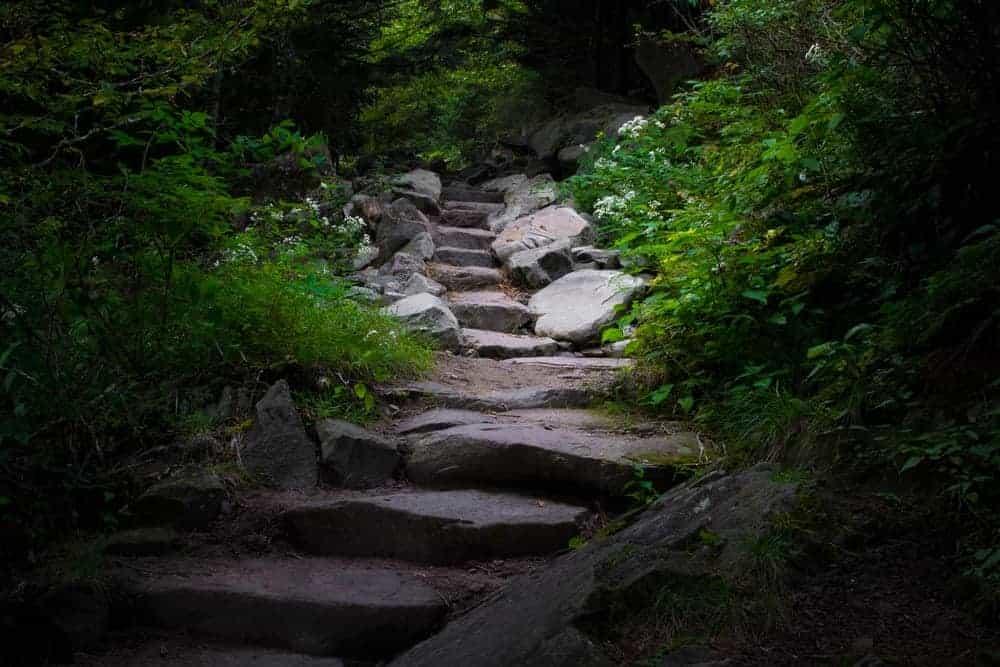 Forney Ridge Trail is one of the hidden gems in Gatlinburg TN.