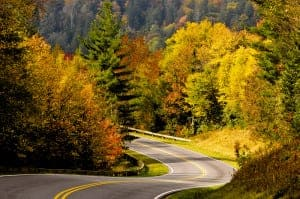 Autumn trees lining a road through the Great Smoky Mountains