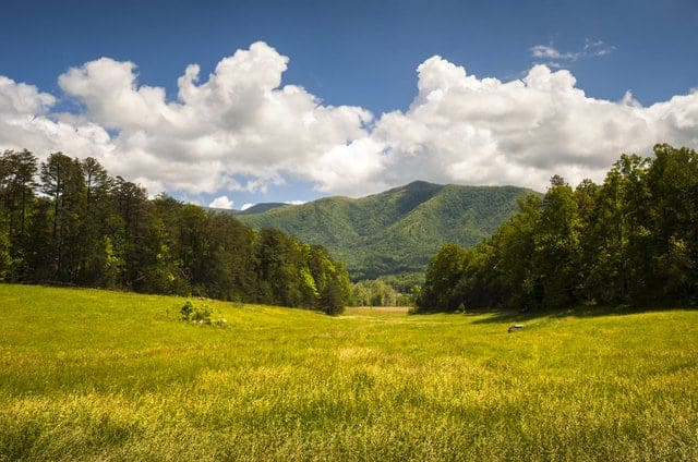 Grassy view of Cades Cove in the Great Smoky Mountains National Park