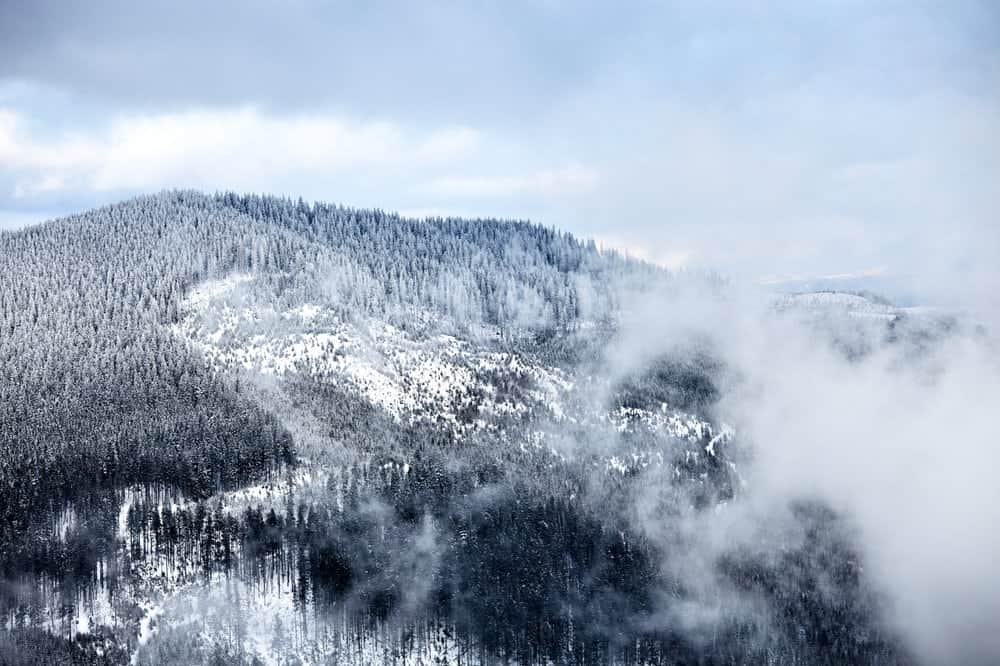 winter in the Smoky Mountains