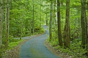 Roaring Fork Motor Nature Trail road in the Great Smoky Mountains National Park