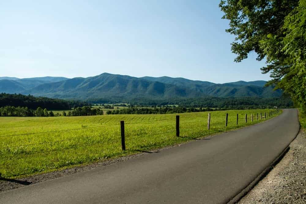 Sunny view from the Cades Cove Road