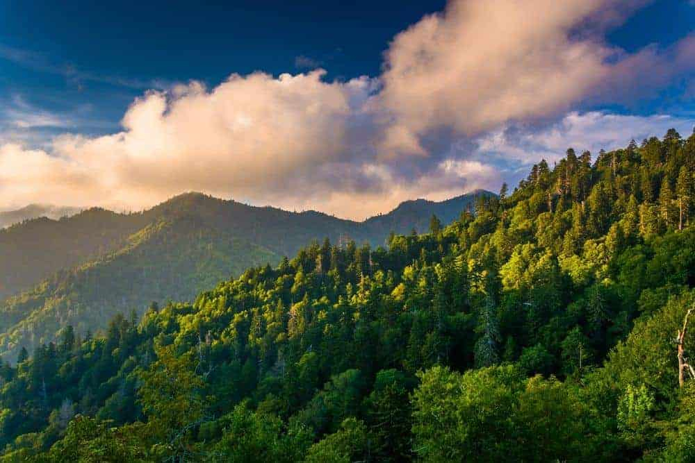 A beautiful photo taken from an overlook on Newfound Gap Road in the Great Smoky Mountains National Park.