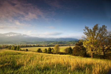 Amazing View in Cades Cove