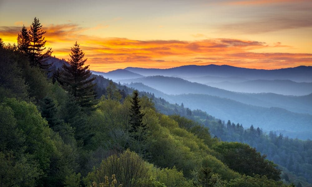 Time Magazine Features the Smoky Mountains to Celebrate 100 Years of the National Park Service