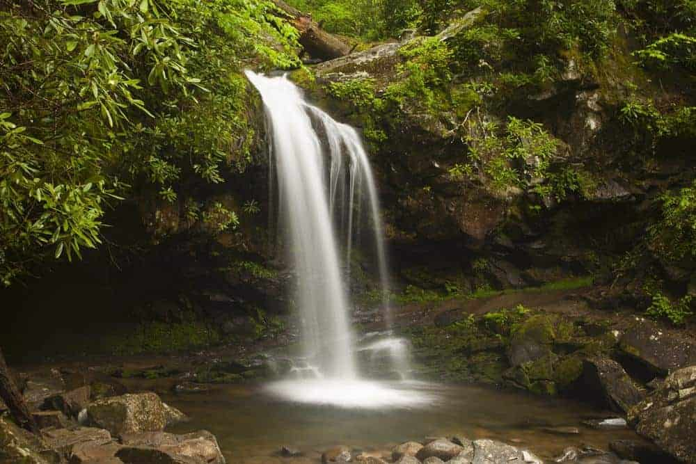 Grotto Falls in the Great Smoky Mountains