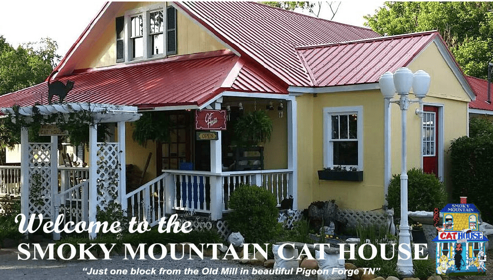 Welcome to the Smoky Mountain Cat House