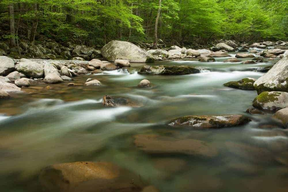 A river flowing through Greenbrier in the Smoky Mountains.