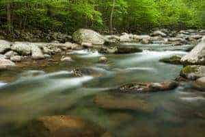 Beautiful view of the Little Pigeon River in Greenbrier in the Smoky Mountains.
