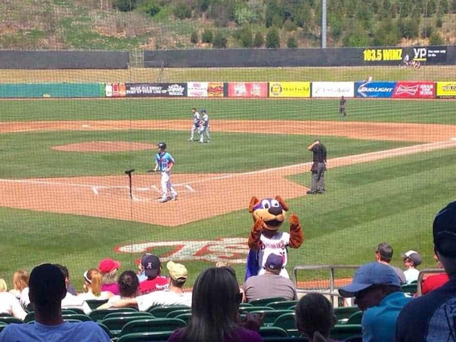 Mascot giving thumbs up to the stands at a Tennessee Smokies baseball game.