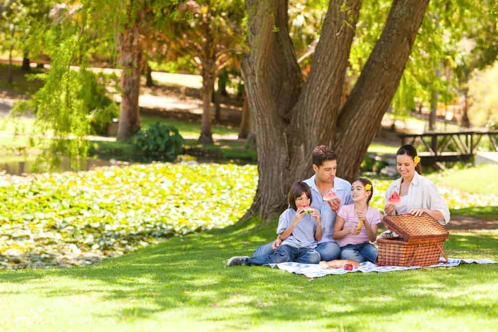 Happy family enjoying a picnic in a park.