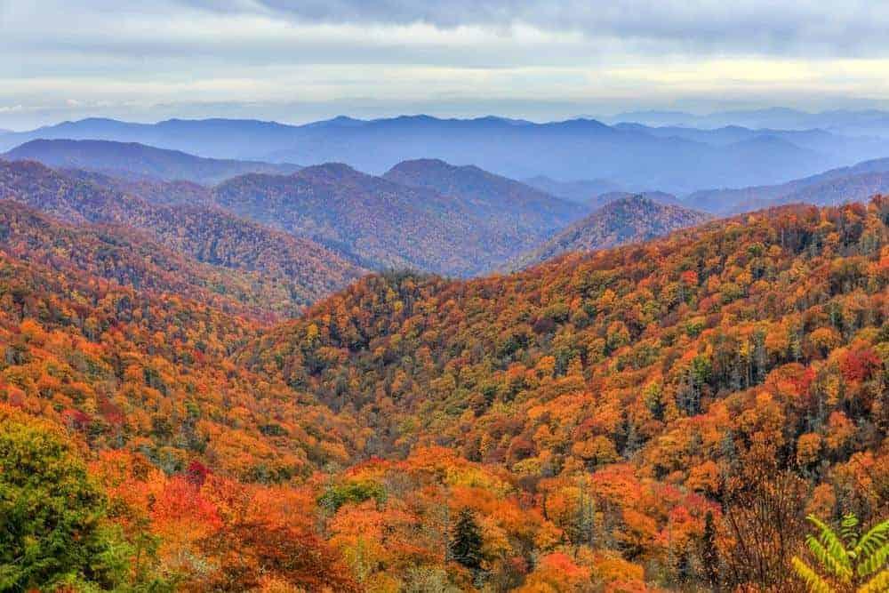 smoky mountains fall foliage