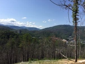 Mountain Views from Firefly Village