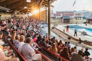 outdoor venue at Paula Deen's Lumberjack Feud