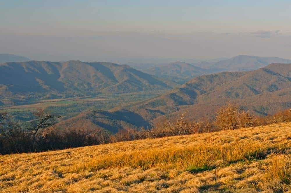 Gregory Bald in the Smoky Mountains