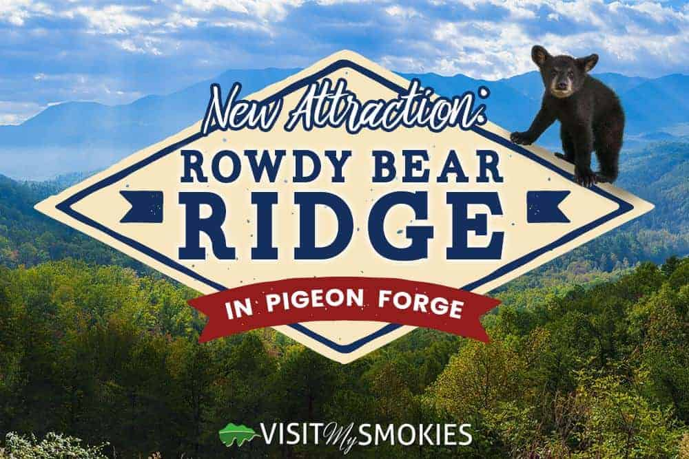 rowdy bear ridge in pigeon forge