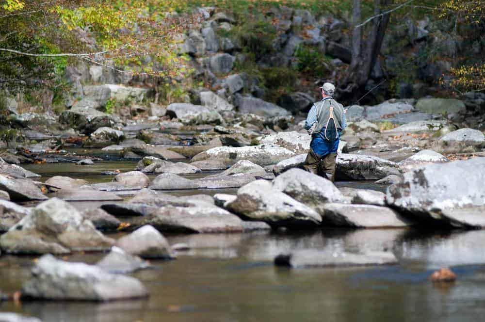 Man fishing in the Little Pigeon River