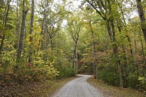 Rich Mountain Road Smoky Mountains