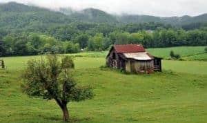 Barn on Wears Valley Road