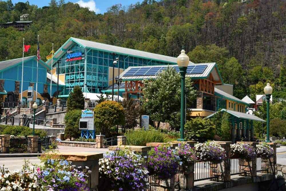 Ripley's Aquarium of the Smokies in Gatlinburg with flowers in front