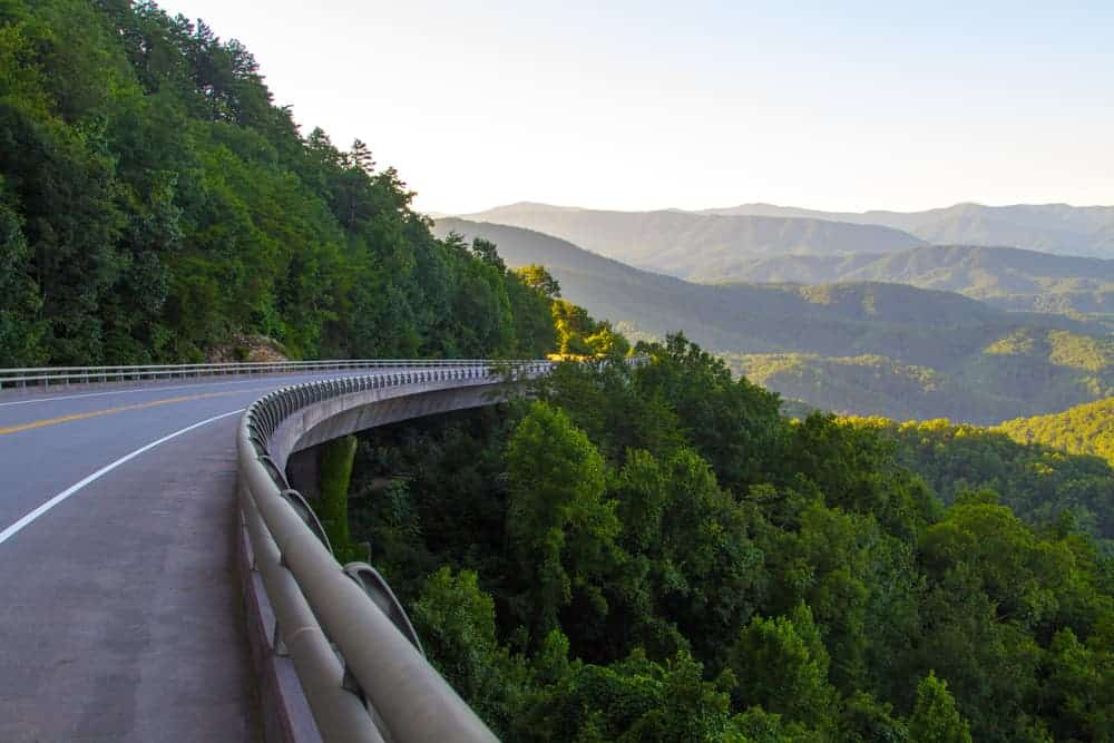 foothills parkway in the summer