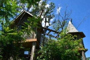 treehouse at anakeesta