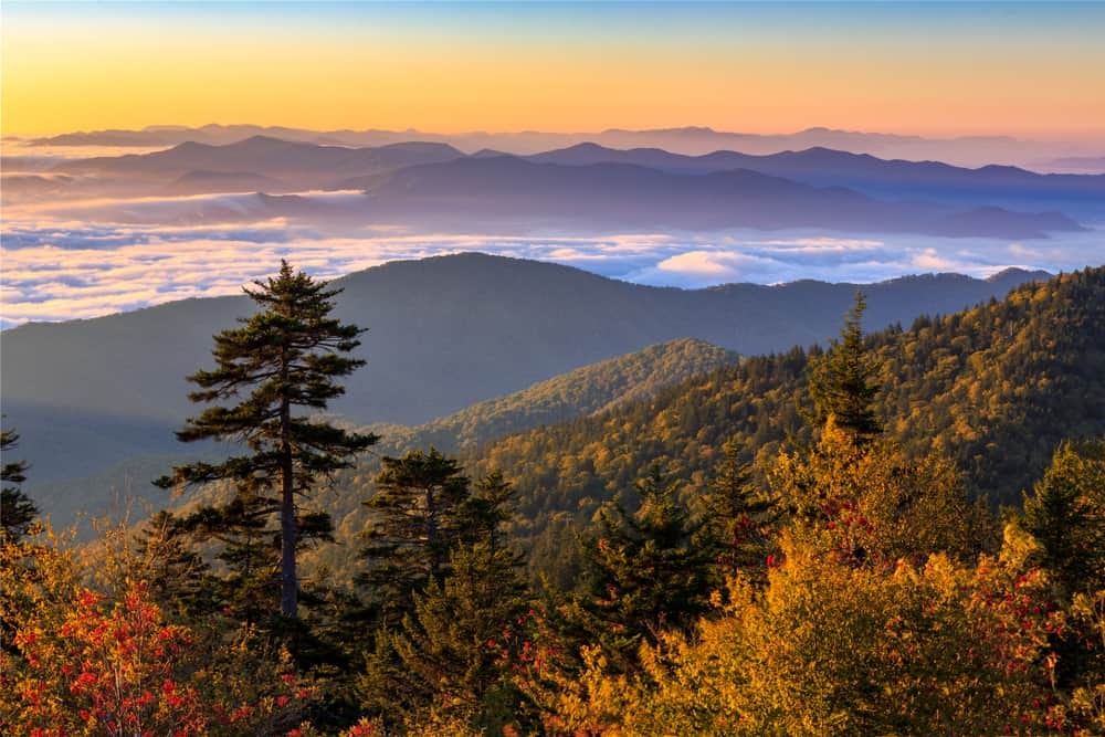 fall at Clingmans Dome